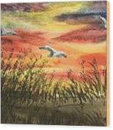 On Wind Of A Rainbow  Wood Print