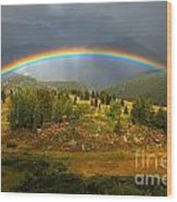 Rainbow Through The Forest Wood Print