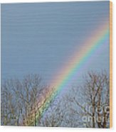 Rainbow Through The Tree Tops Wood Print