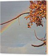 Rainbow Through Tree Wood Print