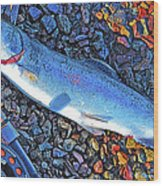 Rainbow Trout Dry Fly Reel Poster Image Wood Print by A Gurmankin