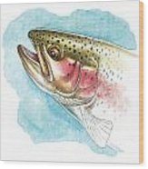 Rainbow Trout Study Wood Print by JQ Licensing