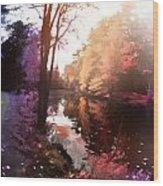 Rainbow Yaddo Wood Print