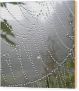 Raindrop Pearls In Fog Wood Print