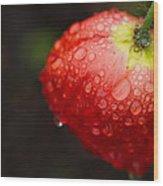 Raindrops And Poppy Wood Print
