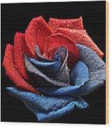 Raindrops On Rose Wood Print