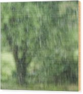 Rainfall Wood Print