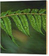 Rainfall On Leaf Wood Print