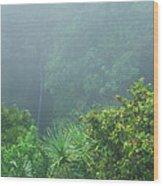 Rainforest And Lower Puohokamoa Falls Maui Hawaii Wood Print