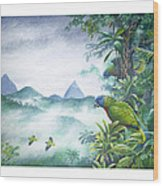 Rainforest Realm - St. Lucia Parrots Wood Print