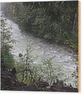 Rainforest River Wood Print