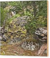 Rainforest Rock Slide Wood Print