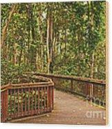 Rainforest Walkway Wood Print