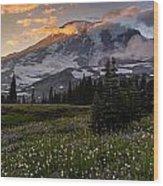 Rainier Meadows Splendor Wood Print