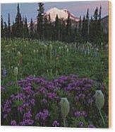 Rainier Pastel Dawn Wood Print