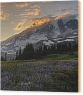 Rainier Purple Lupine Carpet Wood Print