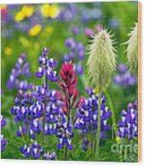 Rainier Wildflowers Wood Print