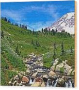 Rainier's Meadows Wood Print