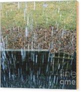 Raining Outside Wood Print