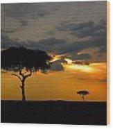 Rains In Africa Wood Print
