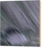 Rainy By Jrr Wood Print