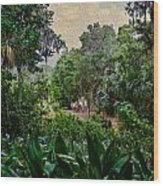 Rainy Day At Bok Garden Wood Print