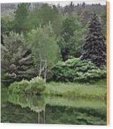 Rainy Day At The Pond Wood Print