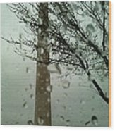 Rainy Day At The Washington Monument Wood Print
