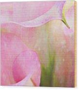 Rainy Day Calla Lilies  Wood Print
