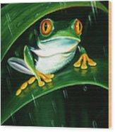 Rainy Day Frog Wood Print