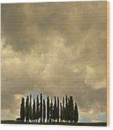 Rainy Day In Toskany Wood Print