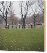 Rainy Day Mfa Wood Print
