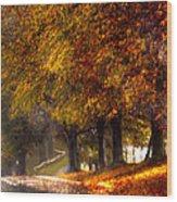 Rainy Day Path Wood Print