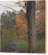 Rainy Fall Day Wood Print by Jennifer  King