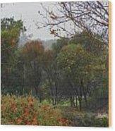 Rainy Forest Wood Print