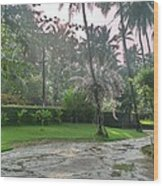 rainy Kerala  Wood Print