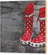 Rainy Season In Germany Wood Print