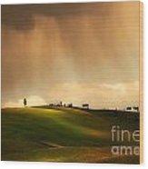Rainy Sunny Toscany Wood Print