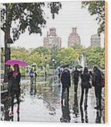 Rainy Washington Park  Wood Print