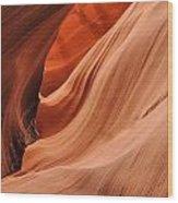Raising Arizona Wood Print