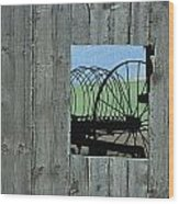 Rake And Barn Wood Print by Doug Davidson