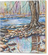 Ralph Stover Park In The Spring Wood Print by Patricia Allingham Carlson