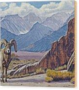 Ram-eastern Sierra Wood Print