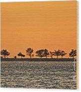 Ram Island Wood Print