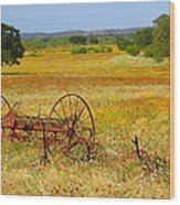 Ranch And Wildflowers And Old Implement 2am-110547 Wood Print