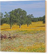 Ranch And Wildflowers And Old Implement 2am-110556 Wood Print
