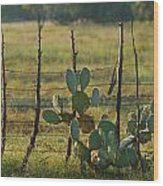 Ranch Cactus Wood Print