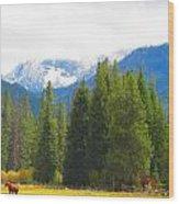 Ranch Horses Wood Print