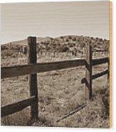 Ranch 2 Wood Print