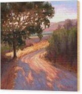 Ranch Road Wood Print